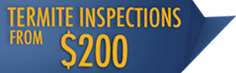 Termite inspection promotion logo